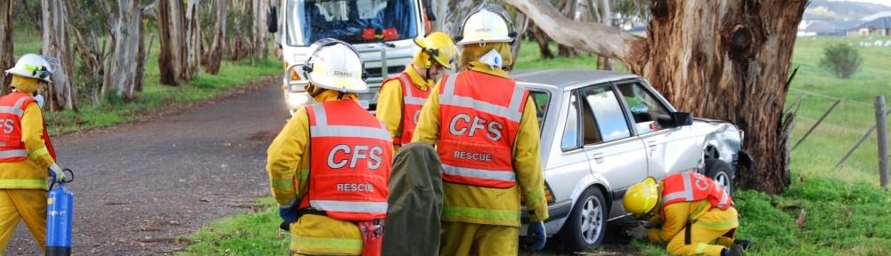 Sturt CFS Group